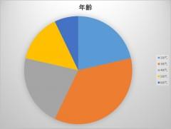 円グラフ年齢